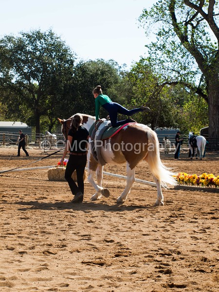 2016_Vaulting_Camelot_(1447_of_3844)