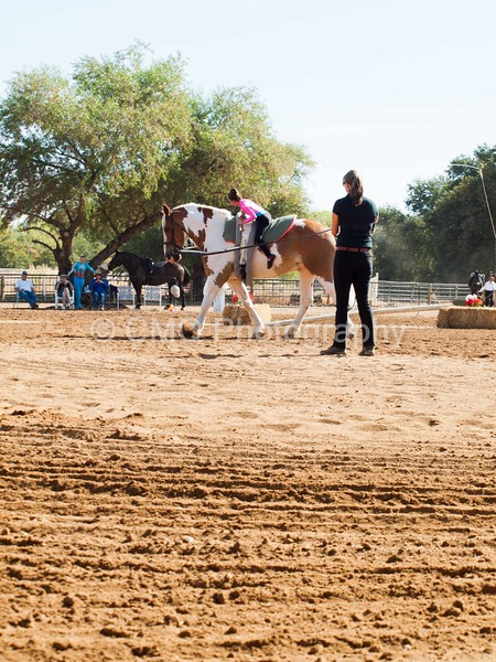 2016_Vaulting_Camelot_(1262_of_3844)