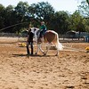 2016_Vaulting_Camelot_(1460_of_3844)