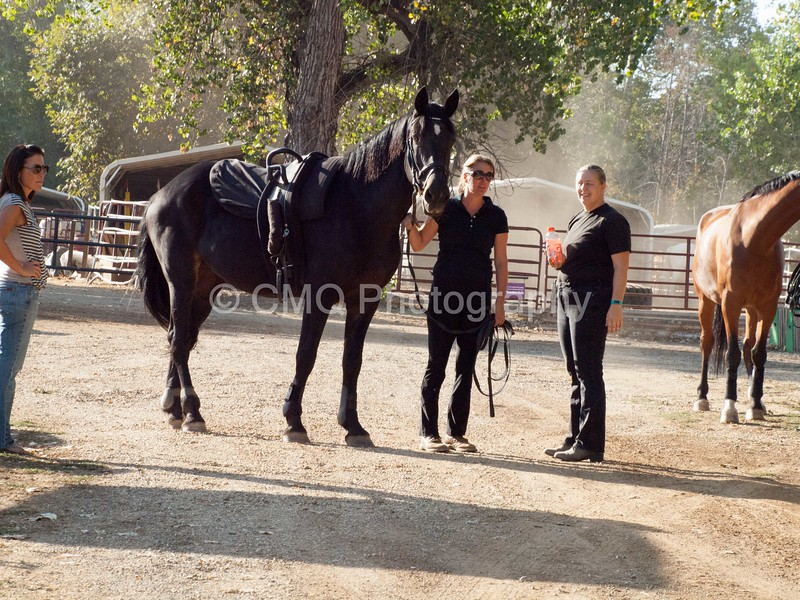 2016_Vaulting_Camelot_(9_of_3844)