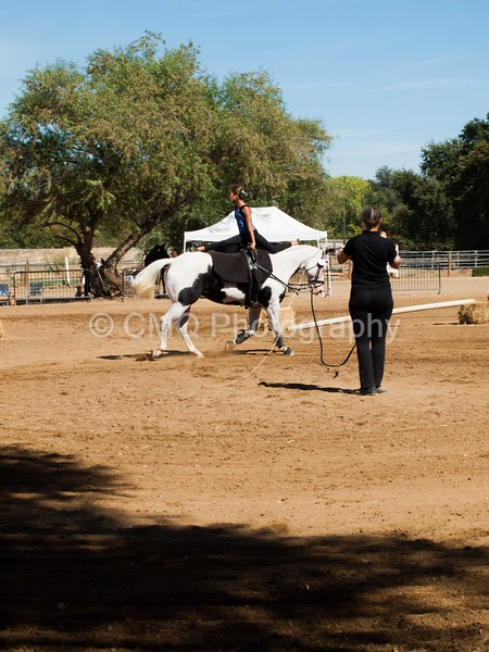 2016_Vaulting_Camelot_(3041_of_3844)