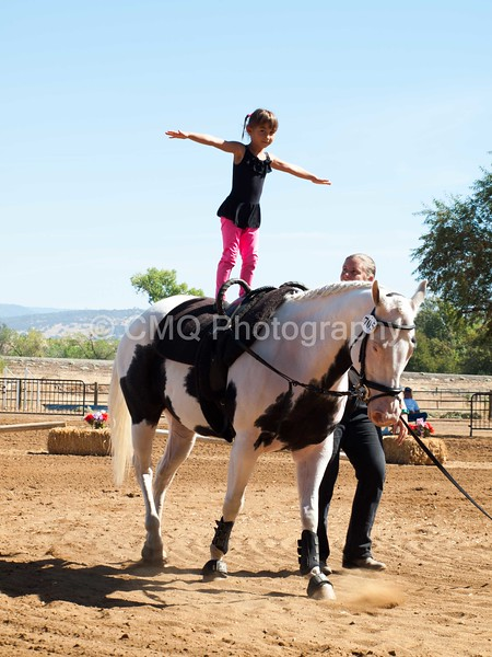 2016_Vaulting_Camelot_(1706_of_3844)
