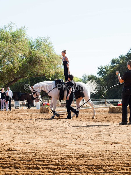 2016_Vaulting_Camelot_(1302_of_3844)