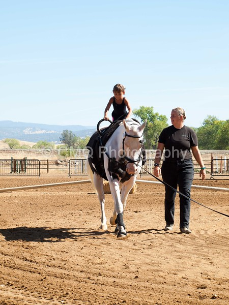 2016_Vaulting_Camelot_(1705_of_3844)