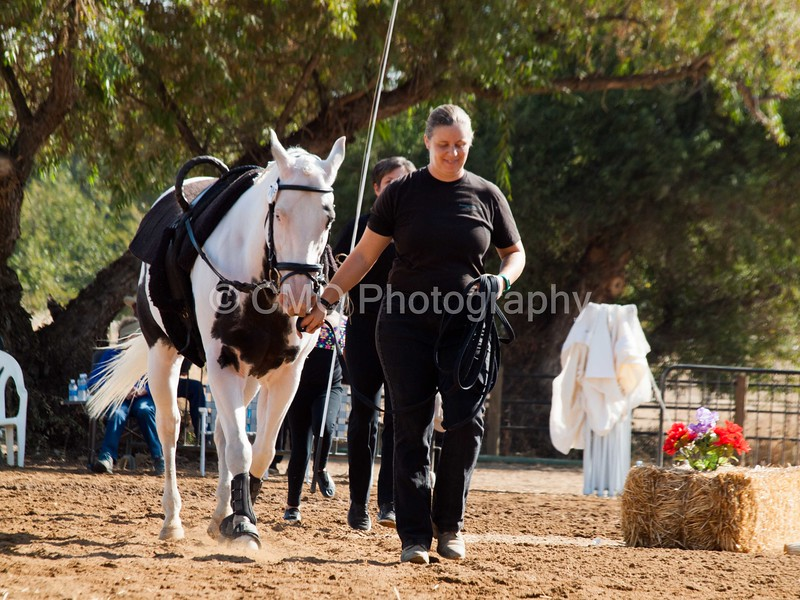 2016_Vaulting_Camelot_(1283_of_3844)