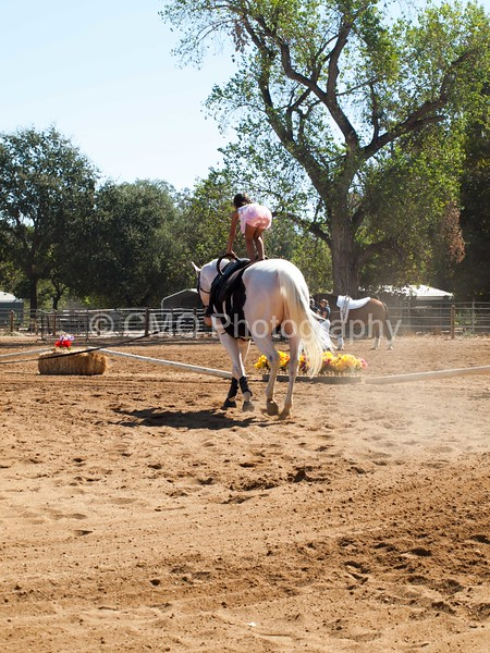2016_Vaulting_Camelot_(1655_of_3844)