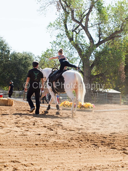 2016_Vaulting_Camelot_(1299_of_3844)