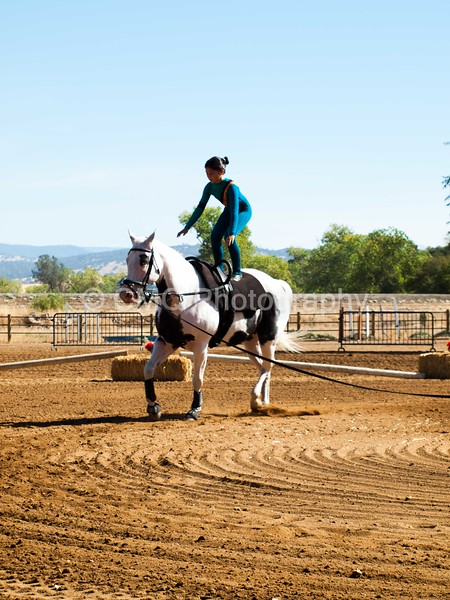 2016_Vaulting_Camelot_(1513_of_3844)