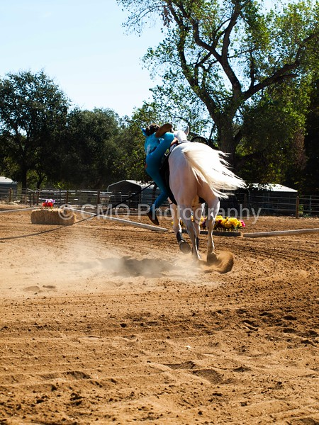 2016_Vaulting_Camelot_(1466_of_3844)