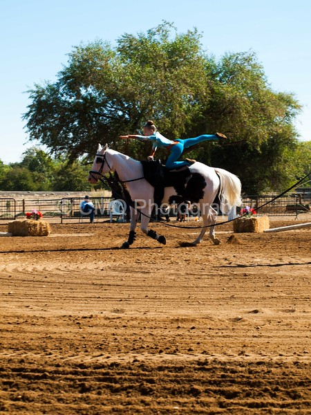 2016_Vaulting_Camelot_(1495_of_3844)