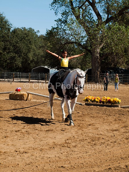 2016_Vaulting_Camelot_(3019_of_3844)