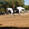 2016_Vaulting_Camelot_(2870_of_3844)