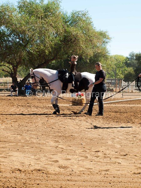 2016_Vaulting_Camelot_(1669_of_3844)
