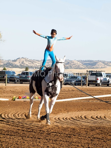 2016_Vaulting_Camelot_(72_of_3844)
