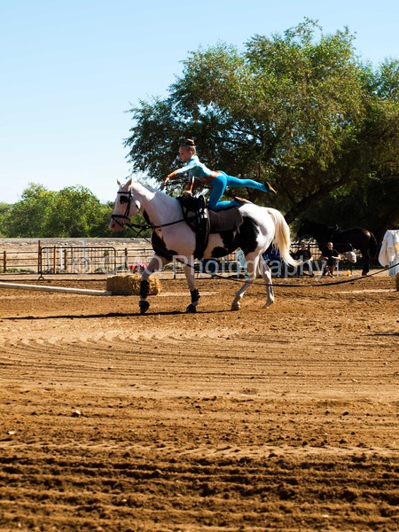 2016_Vaulting_Camelot_(1497_of_3844)