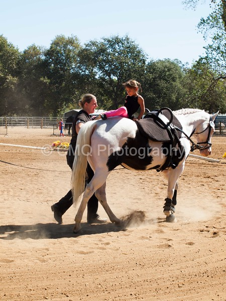 2016_Vaulting_Camelot_(1926_of_3844)