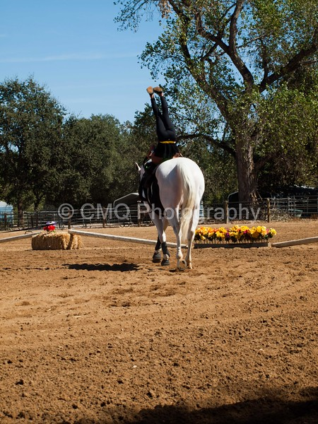 2016_Vaulting_Camelot_(2868_of_3844)