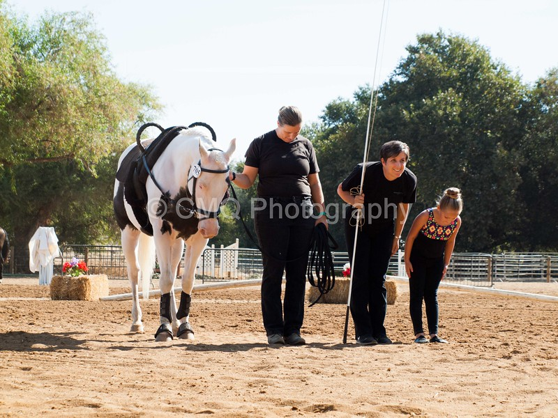 2016_Vaulting_Camelot_(1288_of_3844)