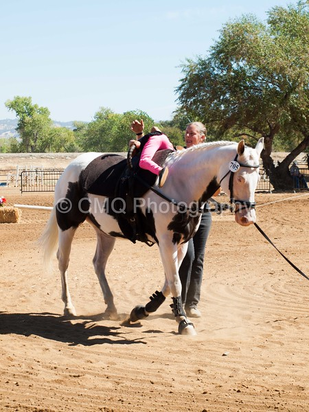 2016_Vaulting_Camelot_(1924_of_3844)