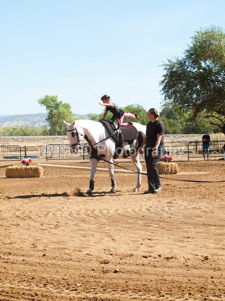 2016_Vaulting_Camelot_(1699_of_3844)