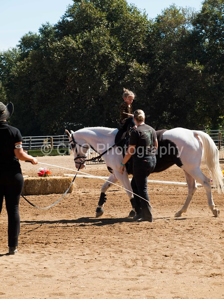 2016_Vaulting_Camelot_(1891_of_3844)