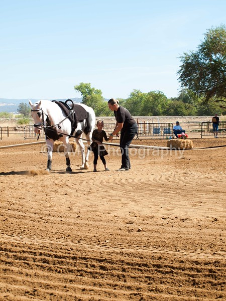 2016_Vaulting_Camelot_(1689_of_3844)