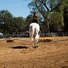 2016_Vaulting_Camelot_(2867_of_3844)
