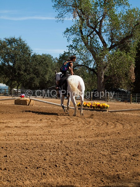 2016_Vaulting_Camelot_(2713_of_3844)