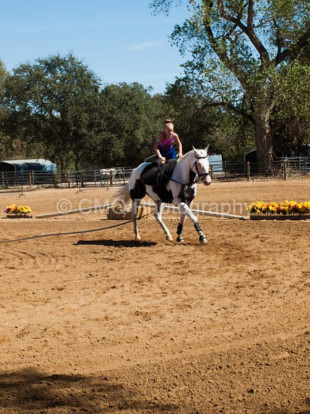 2016_Vaulting_Camelot_(2959_of_3844)
