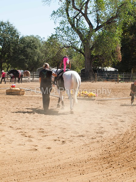 2016_Vaulting_Camelot_(1914_of_3844)