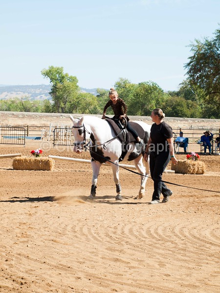 2016_Vaulting_Camelot_(1875_of_3844)