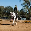 2016_Vaulting_Camelot_(3134_of_3844)