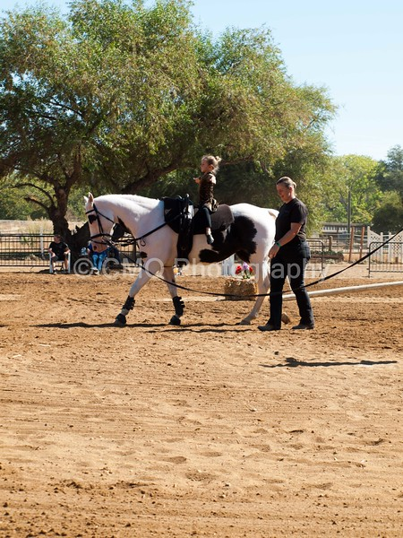 2016_Vaulting_Camelot_(1670_of_3844)