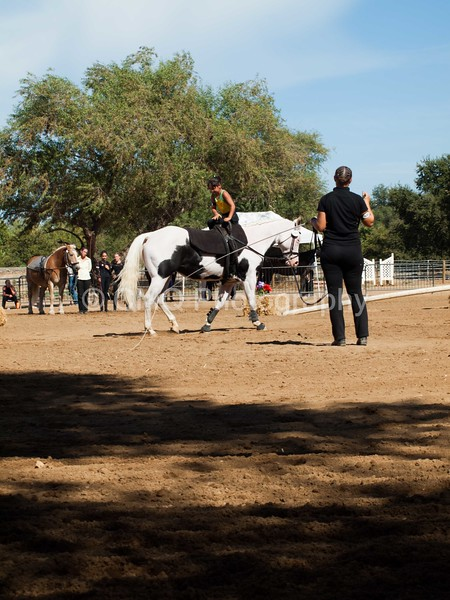 2016_Vaulting_Camelot_(3141_of_3844)
