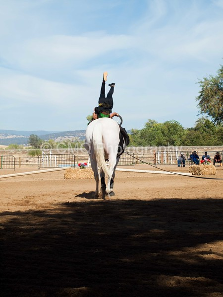 2016_Vaulting_Camelot_(3138_of_3844)