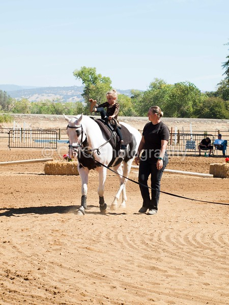2016_Vaulting_Camelot_(1876_of_3844)