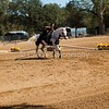 2016_Vaulting_Camelot_(2982_of_3844)