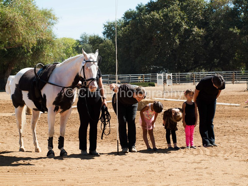 2016_Vaulting_Camelot_(1845_of_3844)