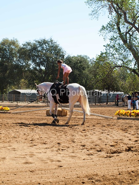2016_Vaulting_Camelot_(1658_of_3844)