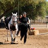 2016_Vaulting_Camelot_(1842_of_3844)