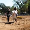 2016_Vaulting_Camelot_(1711_of_3844)