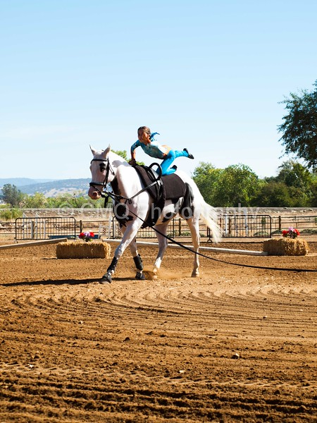 2016_Vaulting_Camelot_(1473_of_3844)