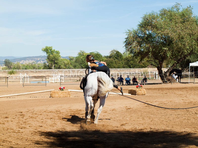 2016_Vaulting_Camelot_(2940_of_3844)