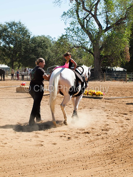 2016_Vaulting_Camelot_(1927_of_3844)