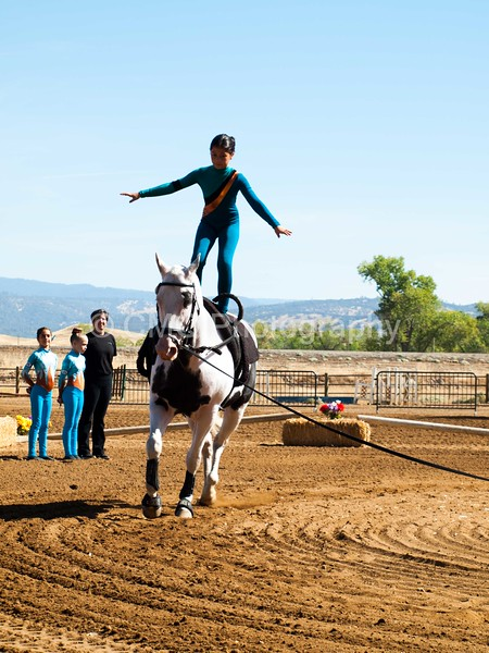 2016_Vaulting_Camelot_(1516_of_3844)