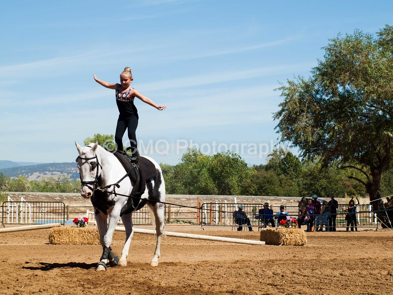 2016_Vaulting_Camelot_(2593_of_3844)