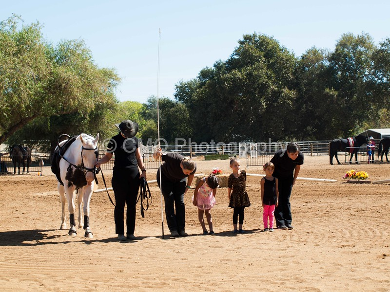 2016_Vaulting_Camelot_(1933_of_3844)
