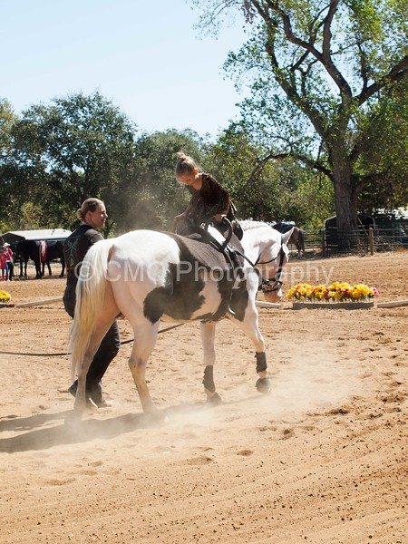 2016_Vaulting_Camelot_(1884_of_3844)