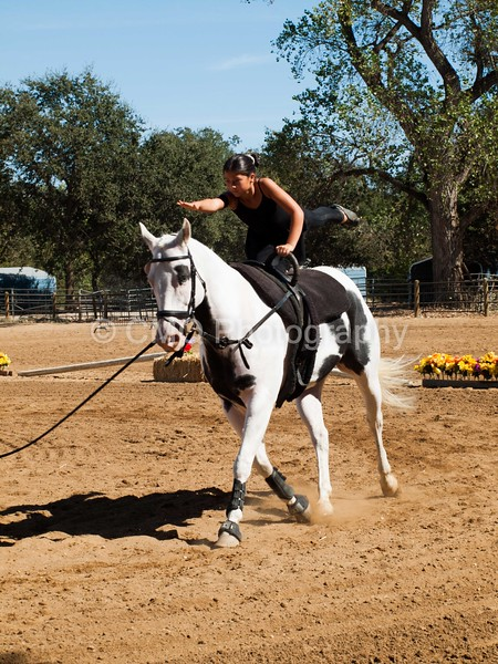 2016_Vaulting_Camelot_(2976_of_3844)