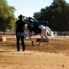 2016_Vaulting_Camelot_(1510_of_3844)